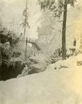 LU-083.1760 - Scranton Falls in winter, 1902