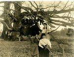 LU-157.0019 - Rochelle Party, 1907 by John Chester Mattoon
