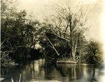 LU-157.0071 - Appomattox River, 1/2 mile down by John Chester Mattoon