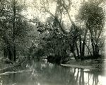 LU-157.0072 - Appomattox River, near Jackson's Dam, Farmville, VA by John Chester Mattoon