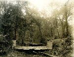 LU-157.0074 - Appomattox River, Duval's 'break dam,' Farmville, VA by John Chester Mattoon