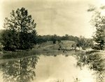 LU-157.0076 - Pond at Richardson's woods (2 or 3 miles out of Farmville toward Crewe) by John Chester Mattoon