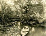 LU-157.0077 - Appomattox River, just above the canal by John Chester Mattoon