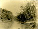 LU-157.0083 - Appomattox River, just below the dam, Farmville, VA by John Chester Mattoon