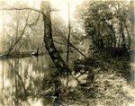 LU-157.0085 - Appomattox River, up from point near Duval's break dam by John Chester Mattoon