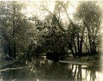 LU-157.0086 - Appomattox River, down from break opposite Jackson's farm by John Chester Mattoon