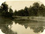 LU-157.0088 - Adam's Pond near Farmville, Virginia by John Chester Mattoon