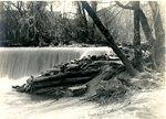 LU-157.0099 - Appomattox River, dam at Farmville, VA, mill in background by John Chester Mattoon