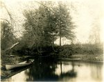 LU-157.0107 - Appomattox River, from Dutchman's Curve looking down by John Chester Mattoon