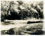 LU-157.0113- Appomattox River at mouth of Buffalo Creek, near Farmville, VA by John Chester Mattoon