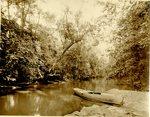 LU-157.0121 - Appomattox River at Buffalo Creek sandbar by John Chester Mattoon