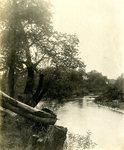 LU-157.0122 - Little Buffalo Creek by John Chester Mattoon
