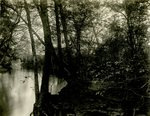 LU-157.0125 - Buffalo Creek, 2 miles down by John Chester Mattoon
