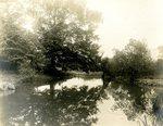 LU-157.0131 - Paulett's Pond, Farmville, VA by John Chester Mattoon