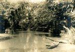 LU-157.0139 - Above Jackson's Dam near Farmville, VA by John Chester Mattoon