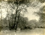LU-157.0148 - Unidentified river/creek by John Chester Mattoon
