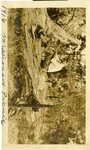 """LU-182.001, Unknown Person sitting on log titled """"1916, Missionary Picnic"""""""