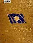 1901 Virginian